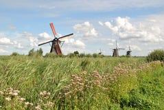 Väderkvarnar av Kinderdijk 4 Arkivfoto