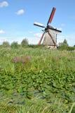 Väderkvarnar av Kinderdijk 5 Fotografering för Bildbyråer