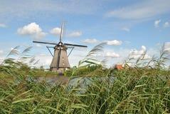 Väderkvarnar av Kinderdijk 6 Royaltyfri Bild