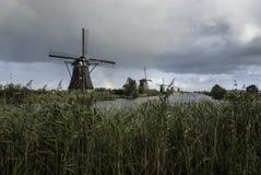 Väderkvarnar i Holland Royaltyfria Foton