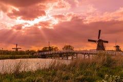 Väderkvarnar i Kinderdijk - Nederländerna Royaltyfria Bilder