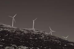Väderkvarnar på en bluff i svartvitt Arkivfoto