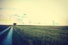 Väderkvarnar på fältet Fotografering för Bildbyråer