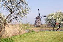 Väderkvarnar på Kinderdijk, Nederländerna Royaltyfri Bild