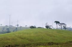 Väderkvarnar på kullen Arkivbild