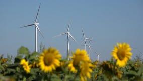 Väderkvarnar spolar turbiner, åkerbruk elektricitet för makt för solrosfältgenerator arkivfilmer