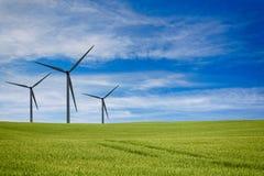 Väderkvarnlantgård på ett grönt fält under en blå himmel royaltyfri bild