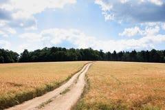 Väg över fält Arkivfoton