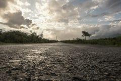 Väg efter regn Arkivfoto
