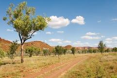 väg för Australien nationalparkpurnululu Royaltyfri Foto