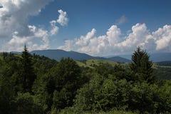 Väg för Carpathian berg Fotografering för Bildbyråer