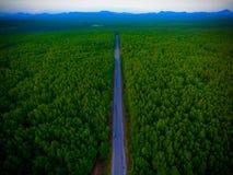 Väg för flyg- sikt till skogen royaltyfria foton