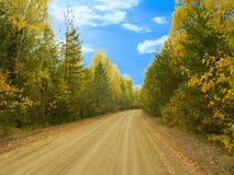 väg för skogkohmak Fotografering för Bildbyråer
