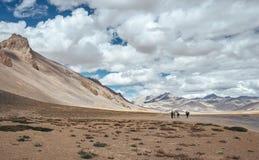 Väg för Tso Kar-Keylong i indiern Himalaya royaltyfria bilder