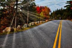 Väg i Acadia NP Royaltyfri Bild