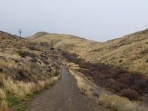 Väg in i berg Fotografering för Bildbyråer