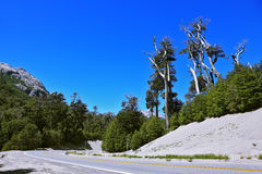Väg i bergen av Patagonia Royaltyfria Bilder