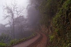 Väg i bergskogen Arkivfoton