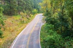 Väg i Blacket Hills royaltyfria bilder