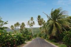 Väg i Bora-Bora Fotografering för Bildbyråer
