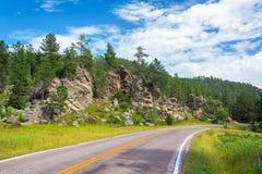 Väg i Custer State Park fotografering för bildbyråer