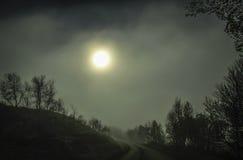 Väg i den dimmiga skogen Fotografering för Bildbyråer