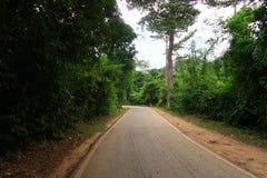 Väg i det mest forrest i Thailand Arkivfoton