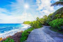 Väg i djungeln på kusten av havet, ansebazarca, seychell royaltyfri bild