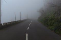 Väg i en dimma i ett moln i bergen av madeiraön, Portugal Arkivbilder