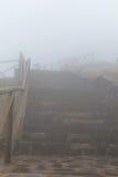 Väg i en dimma i ett moln i bergen av madeiraön, Portugal Royaltyfria Foton