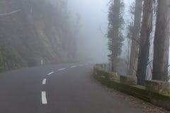 Väg i en dimma i ett moln i bergen av madeiraön, Portugal Fotografering för Bildbyråer