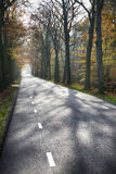 Väg i en höstskogbakgrund Arkivfoto