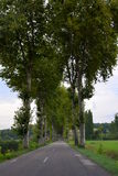 Väg i Frankrike i Dordogne fotografering för bildbyråer