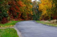 Väg i hösten. Royaltyfri Bild