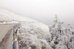 Väg i Nantou, Taiwan i snö Arkivfoto