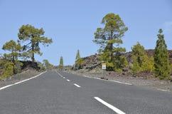 Väg i nationalparken El Teide Royaltyfria Foton