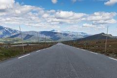 väg 51 i Norge Fotografering för Bildbyråer