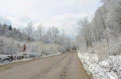 Väg i skog i vinter. Arkivbilder