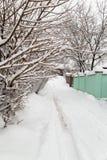 Väg i snön royaltyfria bilder