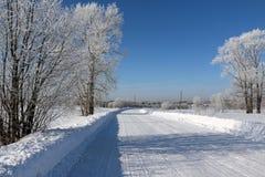 Väg i snow royaltyfri fotografi