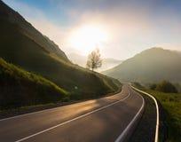 Väg i soluppgångtid, Ailai berg, Ryssland Fotografering för Bildbyråer