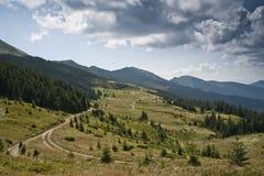 Väg i subalpin äng i de Carpathian bergen Arkivfoto
