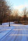 Väg i vintern Arkivbild