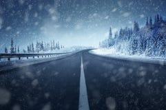 Väg i vinterskog arkivbild