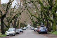 Väg med bilar på båda sidor Arkivbild