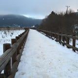 Väg med snö Arkivfoto