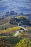 Väg mellan kullarna av Langa Piemonte Italien Royaltyfri Foto
