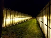 väg mellan växthus arkivbild