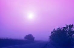Väg och dimma Arkivbilder