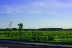 Väg och gräs Arkivfoto